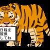 来年の虎の穴 夏合宿は2018年7月28日(土)〜29日(日)に愛知県伊良湖で